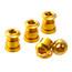 Reverse Kettenblattschrauben gold